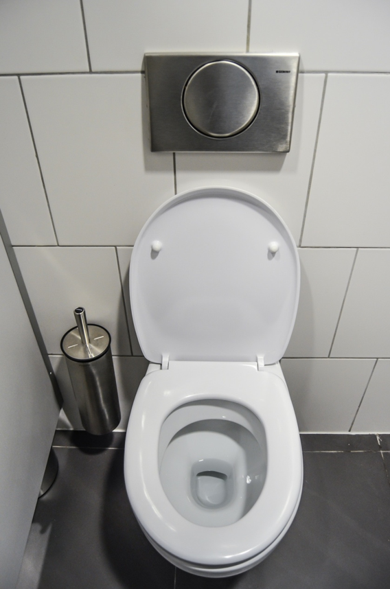 #19 Toilet Seats are Covered in Germs