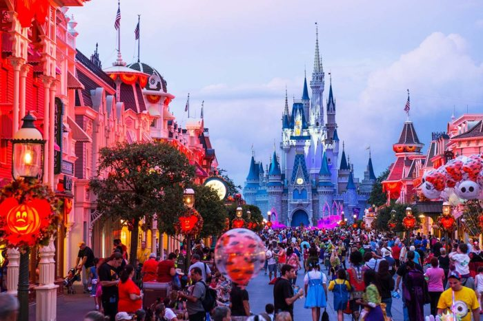here are the top 5 things you should do when you go to Disney World