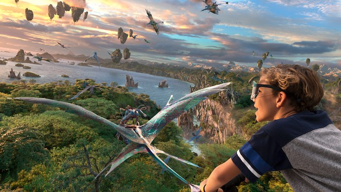 Top 5 Most Immersive Rides at the Disney Parks - Flight of Passage