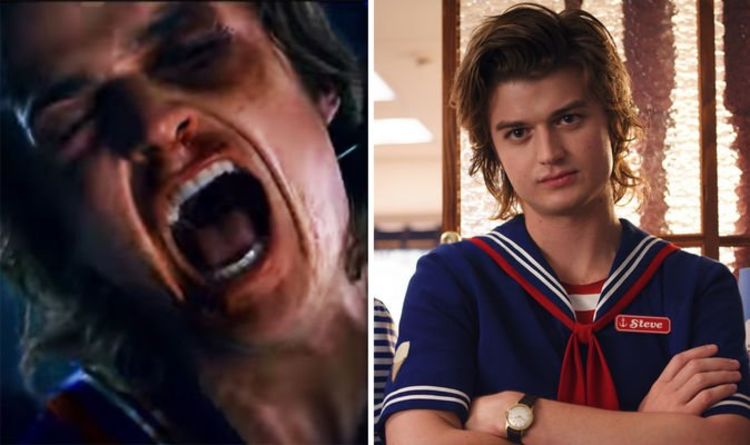 Top 5 Steve Harrington Quotes From Stranger Things