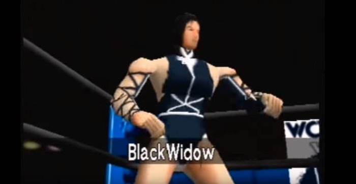 Top 5 coolest Characters from WCW v:s NWO World Tour - Black Widow