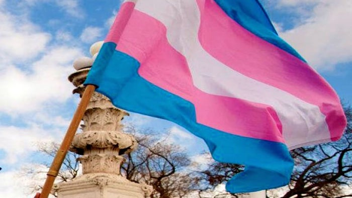 Top 5 Causes You Can Support in November - Transgender Awareness Month