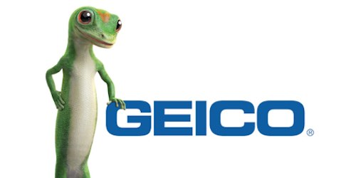 Top 5 Companies You Didn't Know The Full Names To - Geico