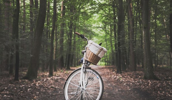 Top 5 Safe Activities You Can Do With Your Roommates This Summer - Bike Ride