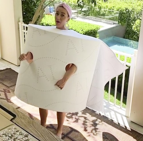 Top 5 Halloween Costumes For 2020 - Toilet Paper