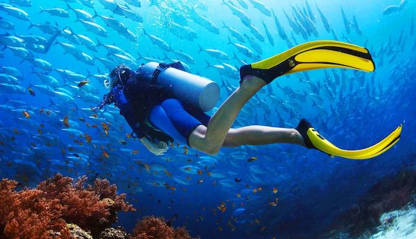 Top 5 Words You Didn't Know Were Acronyms - Scuba