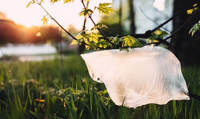 Top 5 Ways to Use Less Plastic - Plastic Bags