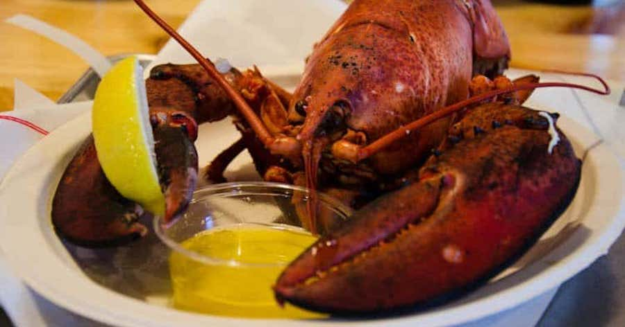 Top 5 Yummy Snacks From The State of Maine -