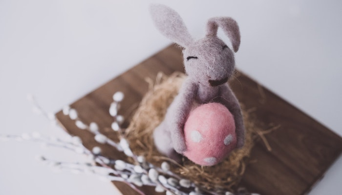 Top 5 Fresh Ways to Decorate Your Place for Easter - Bunnies