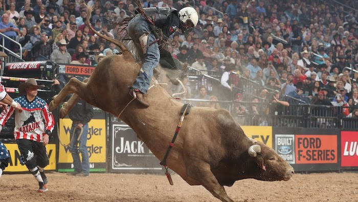 Top 5 of the Most Dangerous Jobs to Have - Bull Rider
