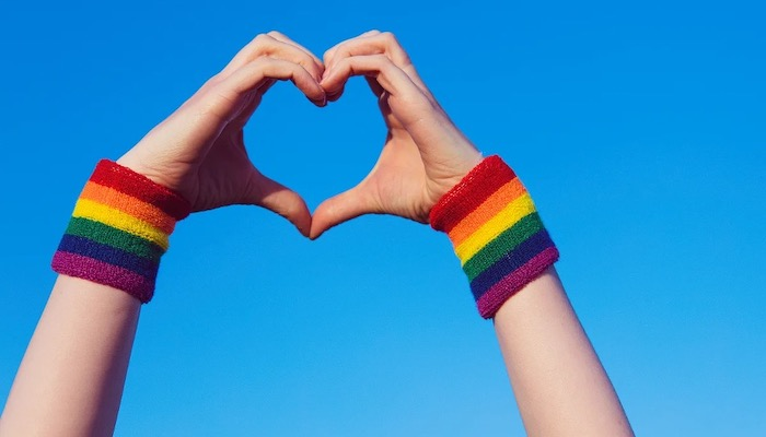 Top 5 Ways To Be An Ally During Pride Month And Always - Involve Yourself In LGBTQ+ Organizations And Causes