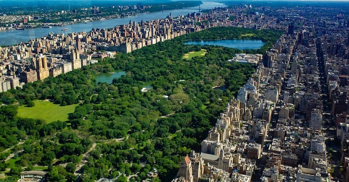 Top 5 Things To Do On Your First New York City Trip - Go To Central Park