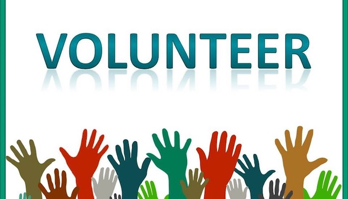 Top 5 Aspects You Need On Your Resume To Get Your Dream Job - Volunteering Experience