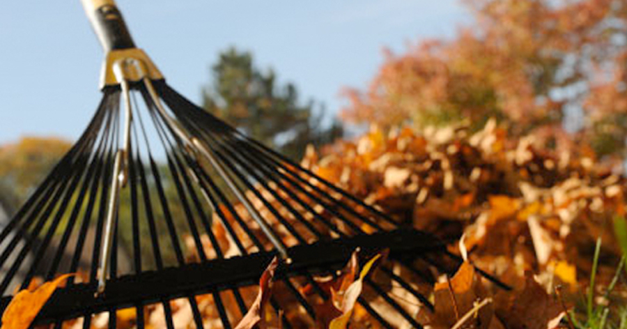 Top 5 Thoughts You Have When it's In Between Summer and Fall